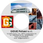 GIDUE - DVD
